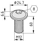 Linsenflanschschraube M12x60, verzinkt